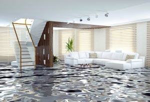 Water Damage Cleanup Mansfield, Water Damage Cleanup Sandusky, Water Damage Cleanup Findlay